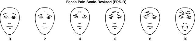 Assessment Tools   Basicmedical Key