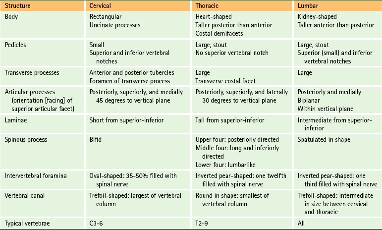 General Characteristics Of The Spine Basicmedical Key