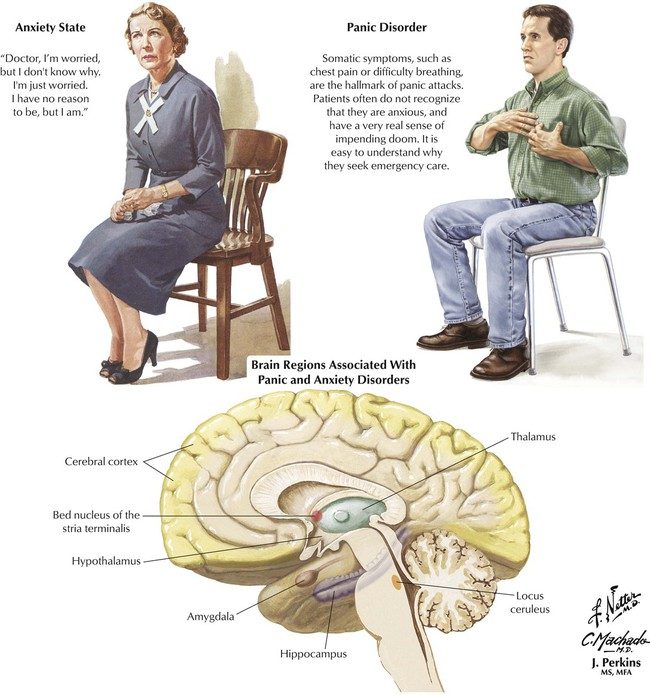 Drugs Used In Disorders Of The Central Nervous System And