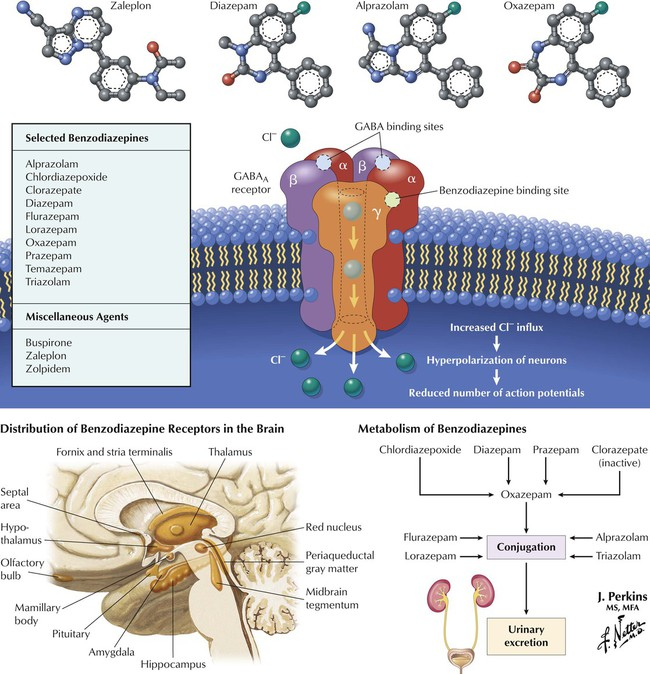 the use of benzodiazepines for the treatment of central nervous system disorders