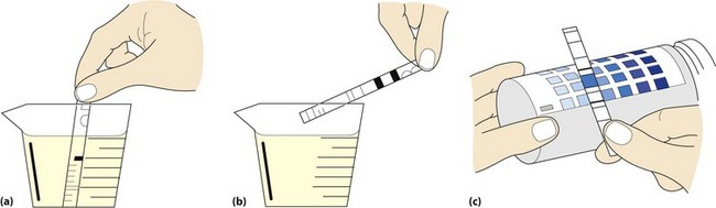 (b) excess urine removed  (c) test strip is compared with colour chart on  bottle label