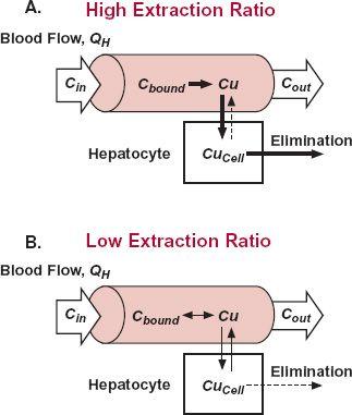 Elimination Basicmedical Key