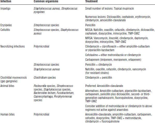 Infectious Disease   Basicmedical Key