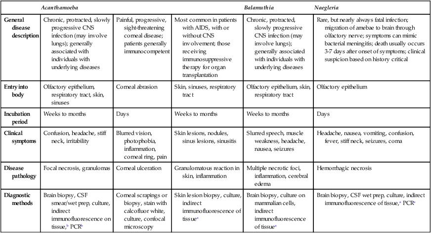 Other Protozoa   Basicmedical Key