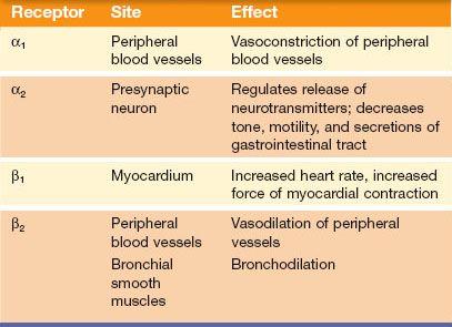 Adrenergic Drugs Basicmedical Key