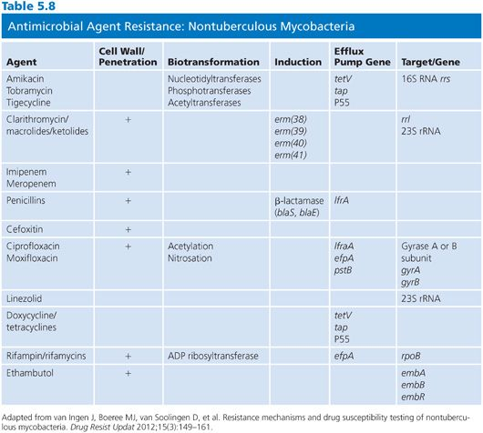 micronase medicine