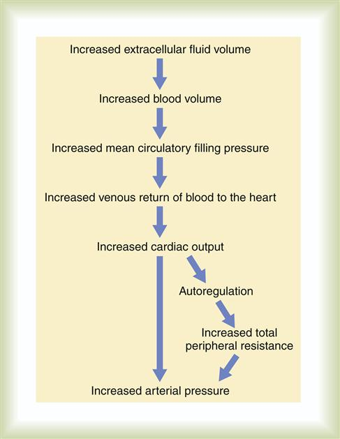 Alterations In Blood Pressure Basicmedical Key
