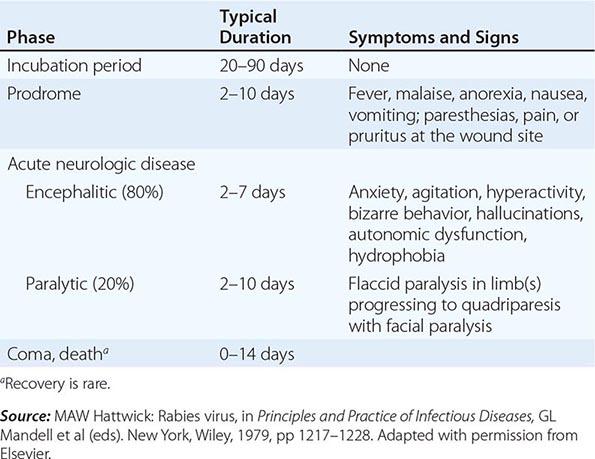 Measles (Rubeola) | Basicmedical Key