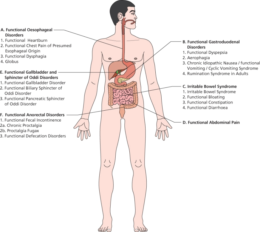 Gastrointestinal Symptoms: Functional Dyspepsia and