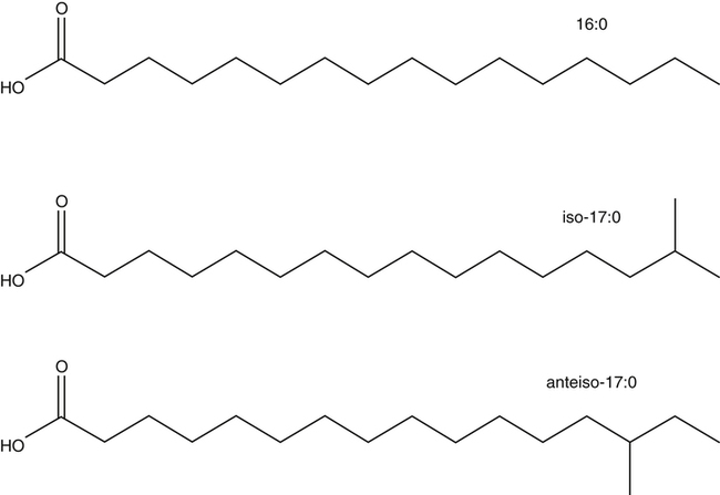 Structure, Nomenclature, and Properties of Lipids