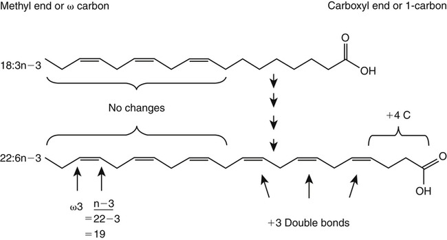 Structure, Nomenclature, and Properties of Lipids