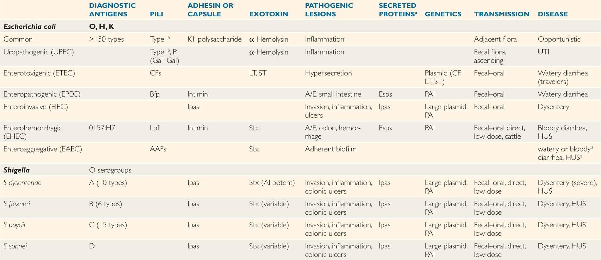 33 Enterobacteriaceae | Basicmedical Key