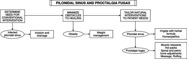 Proctologic Conditions | Basicmedical Key