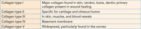Wound Healing | Basicmedical Key