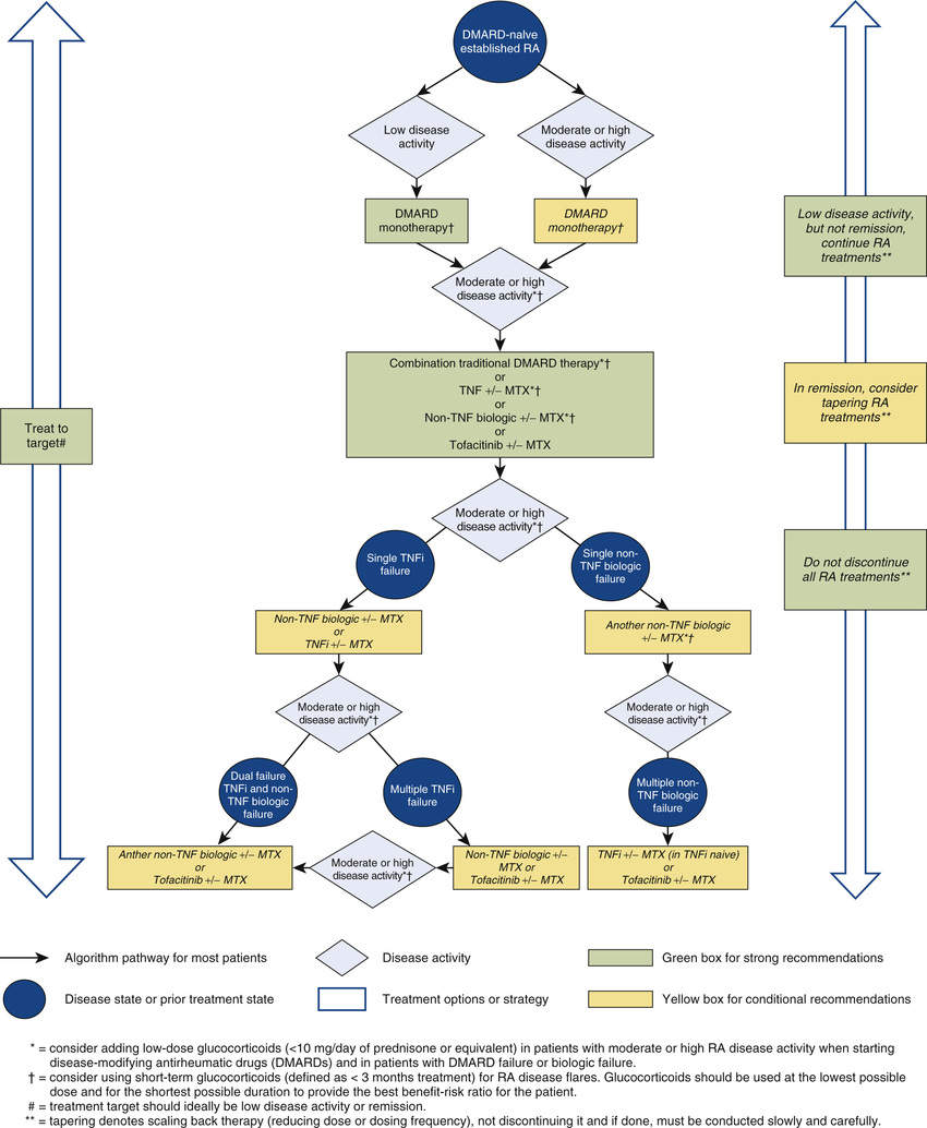 Drug Therapy Of Rheumatoid Arthritis Basicmedical Key